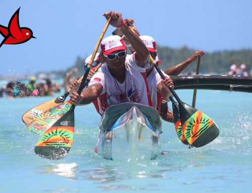 Vini partenaire officiel de la 27ème Hawaiki Nui Va'a
