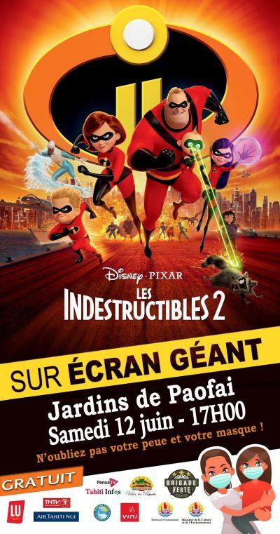 indestructibles1